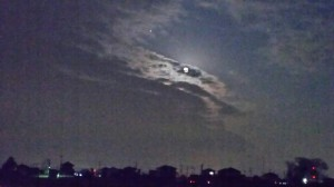 今宵は満月です