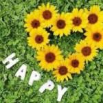 アヒムサについて考えてみた( ̄Д ̄)ノコバエとの3分間。日々実践が幸せへの道*・*:.。