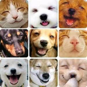 健康、美容、幸せホルモン…笑う門には福来たる(((o(*゚▽゚*)o)))♪♪笑うから、なるのです♡♡♡