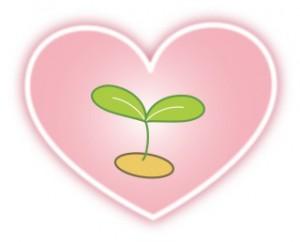 今日、田植えをしてみませんか?いや、しちゃいましょう(((o(*゚▽゚*)o)))もちろん栄養剤は…♪✨
